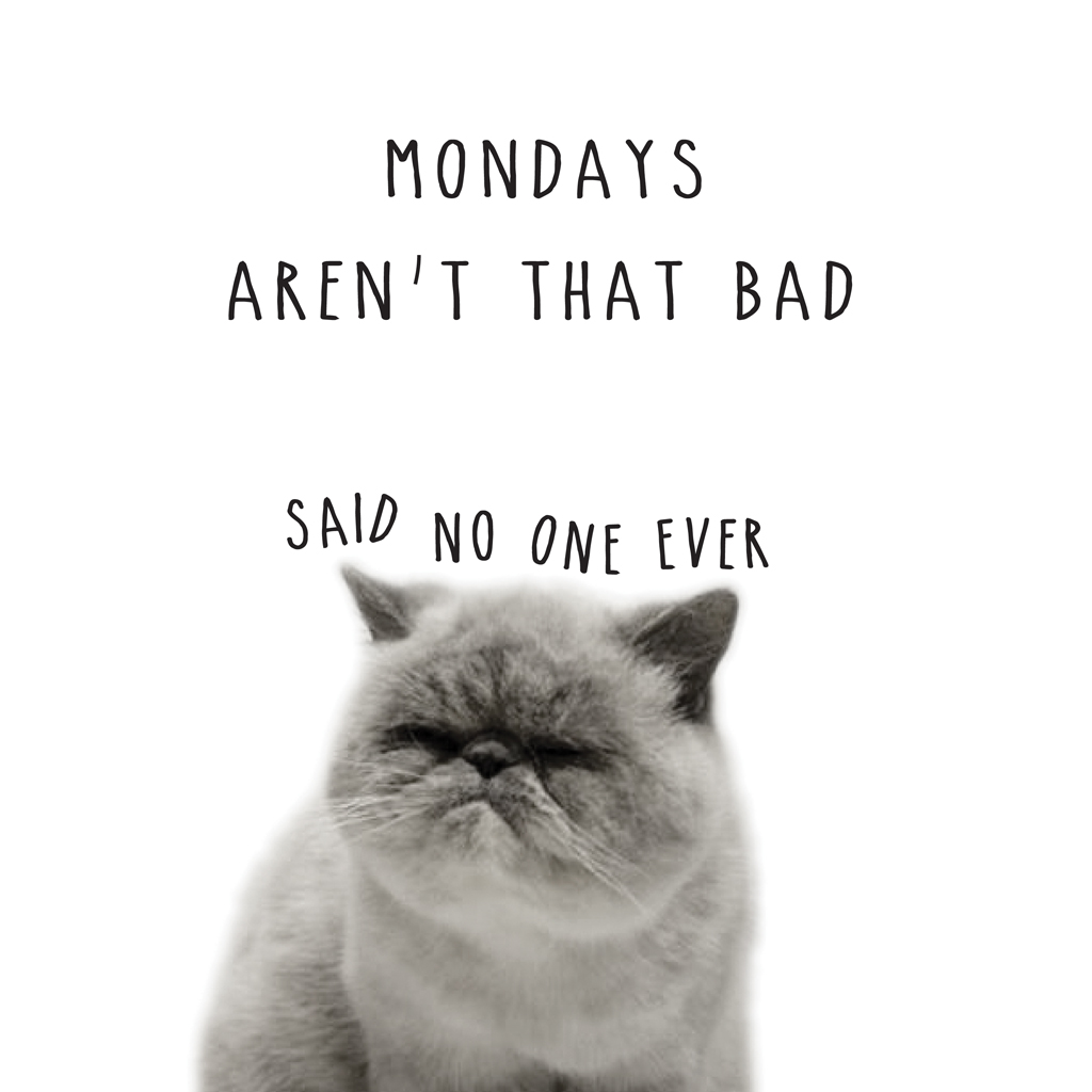 MONDAYS_ARENT_THAT_BAD