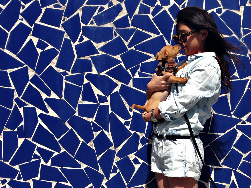 RAG AND BONE DENIM CHAMBRAY JUMPSUIT PLAYSUIT ROMPER PUPPY MOSAIC WALL